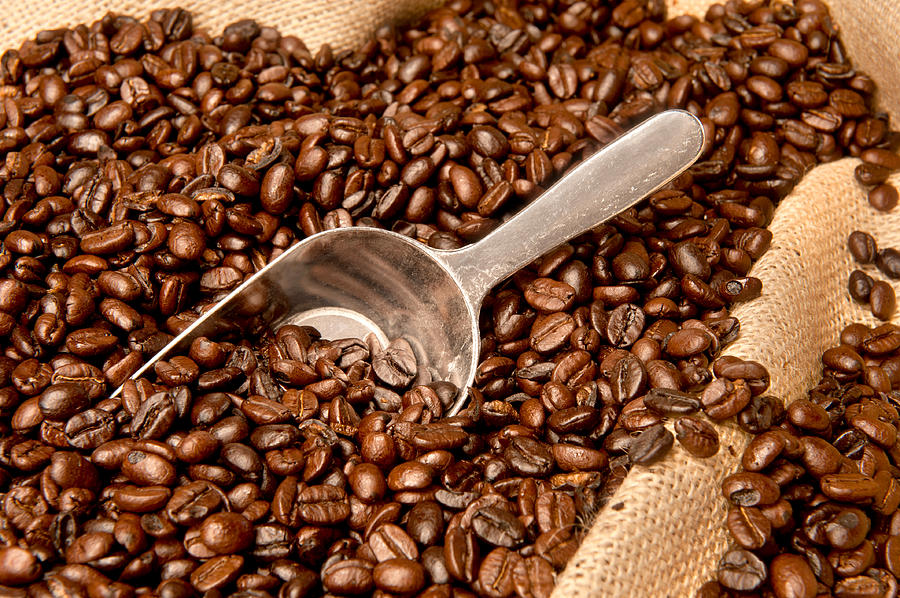 Coffee Beans – A Variety Of Flavours